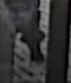 放火 殺人 湯河原 事件 事 神奈川県湯河原町の住宅で女性が殺害され放火されている未解決事件